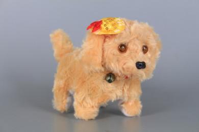 Кученце ходещо
